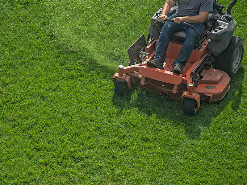 Lawn And Landscaping